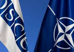 Russian Diplomat Says West Using OSCE as Pressure Tool in Eastern Europe, Central Asia