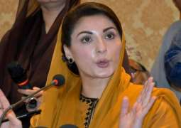 Maryam Nawaz says she will take part in PDM's Multan rally
