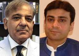 Shehbaz Sharif, Hamza Shehbaz released on parole