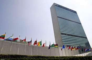 UNSC Meeting on Ethiopia Canceled After Experts Unable to Travel to Region - Diplomats
