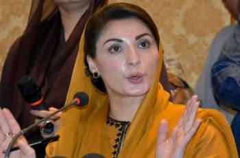 Maryam Nawaz says she will take part in PDM's Multan rally