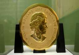 Berlin Police Conduct Raids Over Museum Heist of 100-Kg Gold Coin - Reports