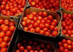 Russian Agriculture Watchdog Allows Tomato Supplies From 34 Uzbek Firms From January 1