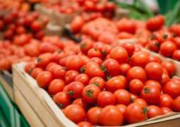 Russia to Lift Curbs on Azerbaijan's Tomato Imports from Jan.1