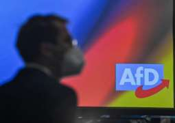 German AfD Party Skeptical About Benefits EU-UK Deal Offers to Germany