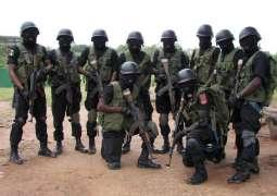 Nigerian Army Kills Nine Bandits in Country's North - Regional Authorities