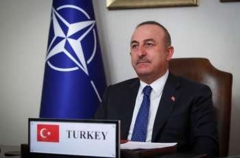 Cavusoglu Praises End of Karabakh 'Occupation', Says Turkey Supports International Law