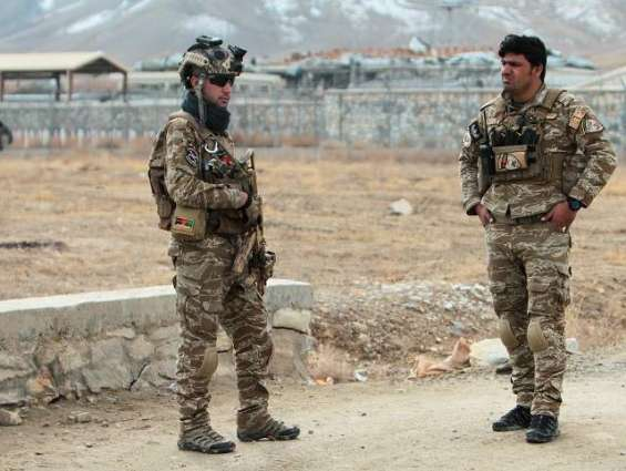 Afghan, Foreign Military Operation in Nangarhar Province Kills 24 Taliban Members - Office