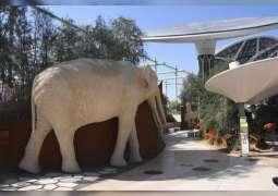 """العرض الأول لأجنحة إكسبو 2020 دبي يكشف للزوار عن جناح الاستدامة """" تيرّا """""""
