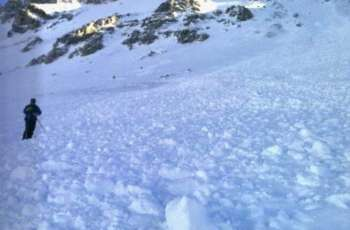 Two People Die From Avalanche While Skiing in Eastern France - Reports