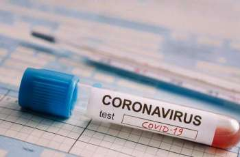 Russia Ready to Register Test Determining Presence of UK Coronavirus Strain - Watchdog