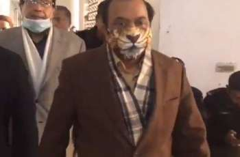 Rana Sana Ullah wears lion's mask on hearing of Khawaja Asif's case