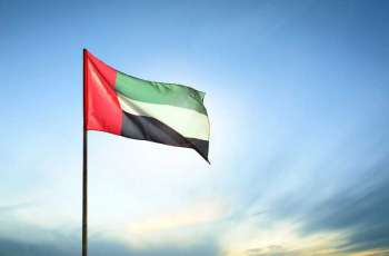 WAM Report: UAE's adoption of updated visa, residency procedures enhances tolerance