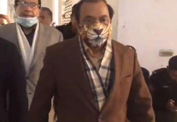Rana Sana Ullah wears lion's mask on hearing of Khawaja Asif's case