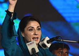 Maryam Nawaz announces support for protesting govt-servants