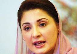 Maryam Nawaz says tactics are being used to target her party ahead of Senate polls
