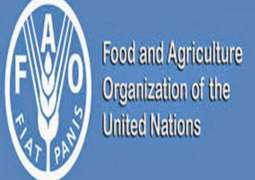 FAO presents Forest and Wildlife Action Plan for Sindh to fight climate change, food insecurity and malnutrition