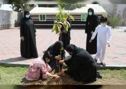 Sharjah Municipality distributes 3000 seedlings within Afforestation Week