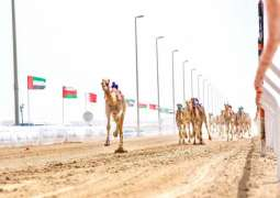 Final Annual Camel Races Festival 'Wathba 2021' starts Monday