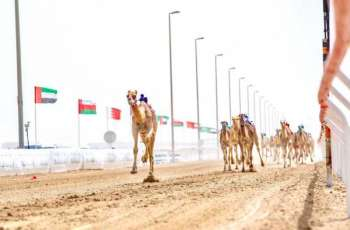Final Annual Camel Races Festival 'Wathba 2021' starts Monday