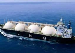 India in Talks With Russia's Novatek on Long-Term Contract for LNG Supplies - Official