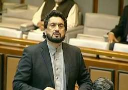 Senate Election: Shehryar Afridi denied to recast vote