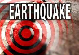 Tsunami Alert Canceled After 8.1 Earthquake in New Caledonia, Authorities