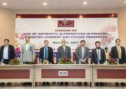 UVAS working on finding antibiotics alternatives in poultry, Vice-Chancellor tells seminar