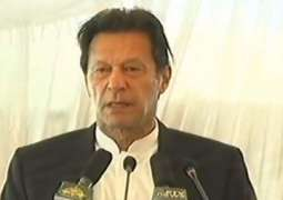PM says Olive plantation will help address climate change, increase exports