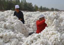 FILA China Vows Continued Use of Xinjiang Cotton, Begins Withdraw from BCI Amid Outcry