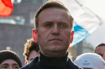 UN Special Rapporteur Says Russia Likely Responsible for Navalny's Alleged Poisoning