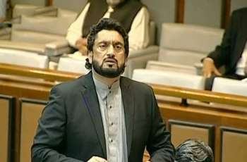 Senate Election: Shehryar Afridi commits blunder by signing his vote