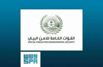 القوات الخاصة للأمن البيئي: مقطع صيد الظبي قديم وخارج المملكة