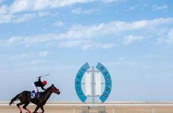ميدان فروسية الجبيل يقيم سباقه الـ ١٣ للموسم الحالي