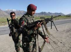 Taliban Kill 7 Afghan Soldiers in Northern Balkh Province - Reports