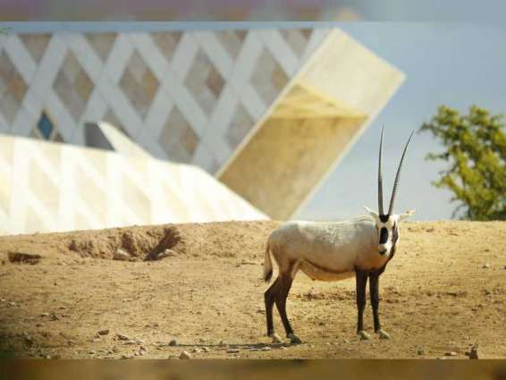 Al Ain Zoo raises awareness about conserving wildlife on World Wildlife Day