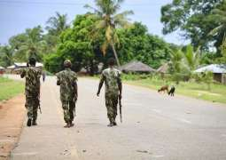 Attack on Mozambique's Palma Involved Militants From at Least 4 Countries - Source