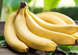 Ecuador to Continue Banana Exports As No Fungus Found in Country - Trade Commissioner