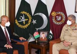 Peace in Afghanistan means peace in Pakistan: COAS