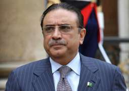 Reference filed against former president Asif Ali Zardari
