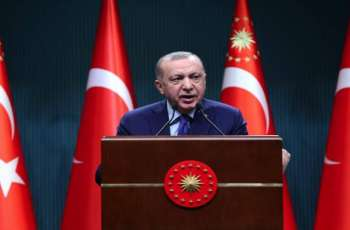 Turkey-Ukraine Defense Cooperation Not Directed Against Third Countries - Erdogan