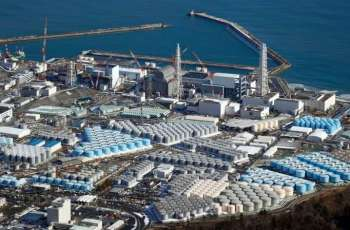 Greenpeace Says Discharging Fukushima Water Into Sea 'Not Best Option'