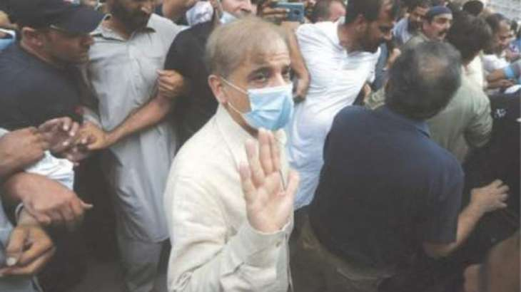 Shehbaz Sharif gets bail from LHC in money laundering case