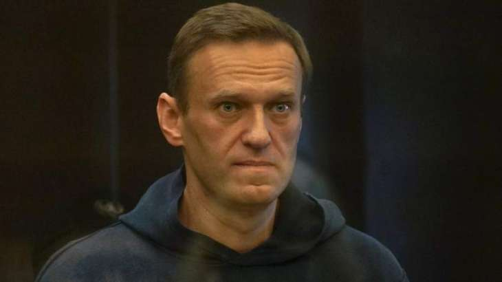 Council of Europe's Human Rights Commissioner Calls for Navalny's Release