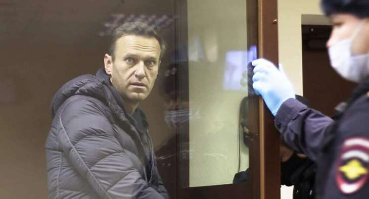 Germany Provided Moscow With No Information on Navalny in 8 Months - Russian Envoy to OPCW