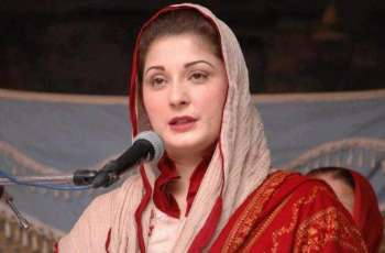 Maryam Nawaz condemns barring of Shehbaz Sharif from travelling abroad