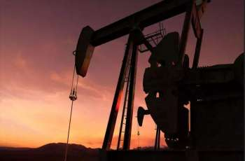 OPEC Oil Production Decreased to 25.04Mln Bpd Month-on-Month in April - IEA