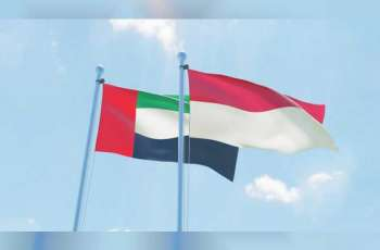 UAE sends plane carrying 48 metric tons of food supplies to Indonesia