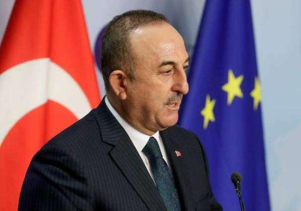 Turkey-Saudi Arabia Cooperation to Bring Regional Stability - Cavusoglu