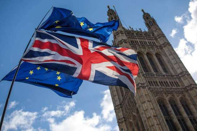 Think Tank Warns UK Diverging From EU on Regulatory Freedoms May Harm Businesses, Trade